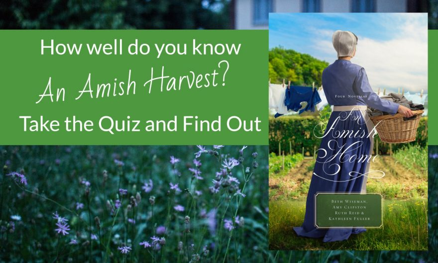How Well Do You Know An Amish Home