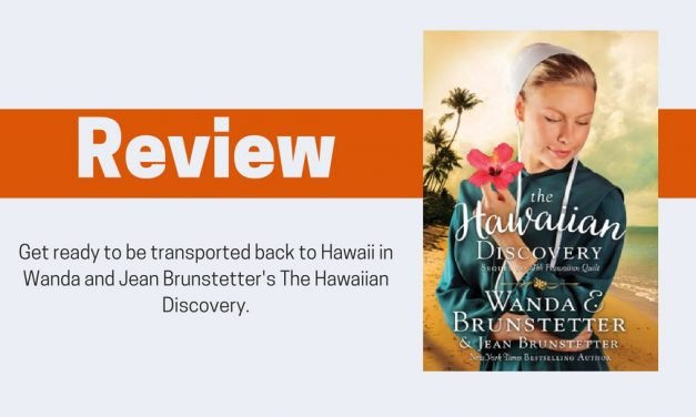 The Hawaiian Discovery by Wanda E and Jean Brunstetter