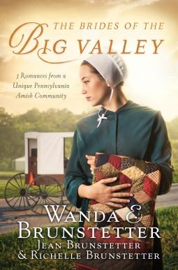 Brides of the Big Valley by Wanda E. Brunstetter Review
